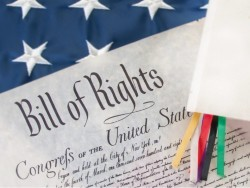 bill of rights cropped